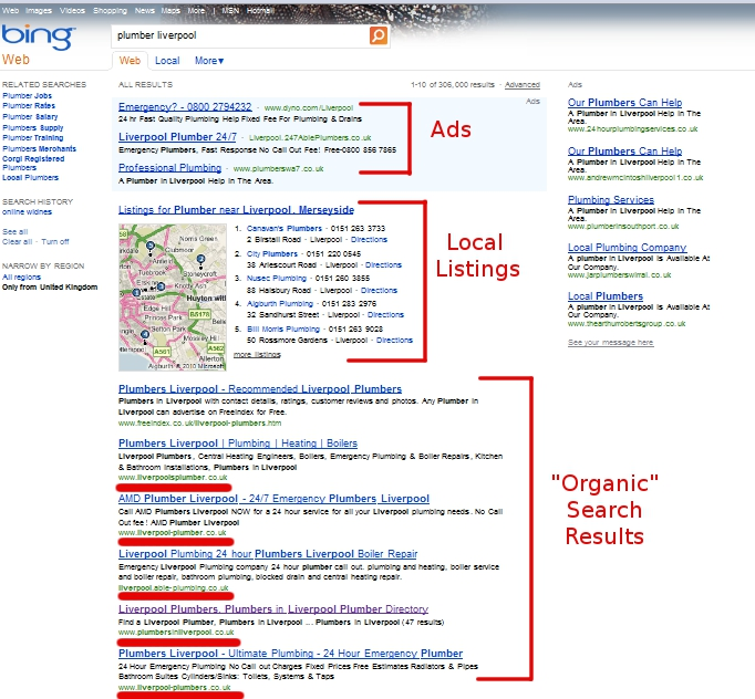 Bing Local Business Search