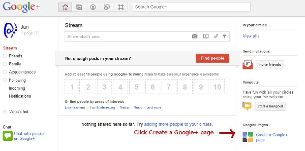 setting up a Google+ Page