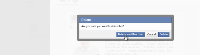 Delete Facebook Page comments step 3 - choose delete and ban or delete from the pop up