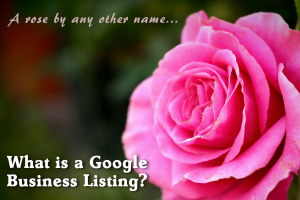 What is a Google Business Listing