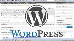 understanding WordPress categories and tags