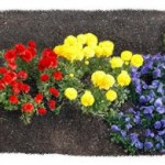 Google Doodle Earth Day