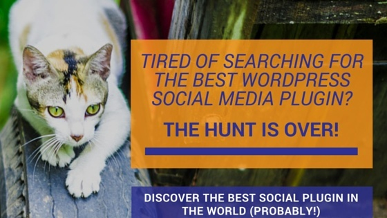 Tired of hunting for the best WordPress social media plugin for your blog?